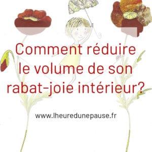 COMMENT REDUIRE LE VOLUME DE SON RABAT-JOIE INTERIEUR?